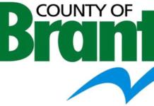 brandt county logo