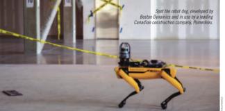 Spot robotic dog